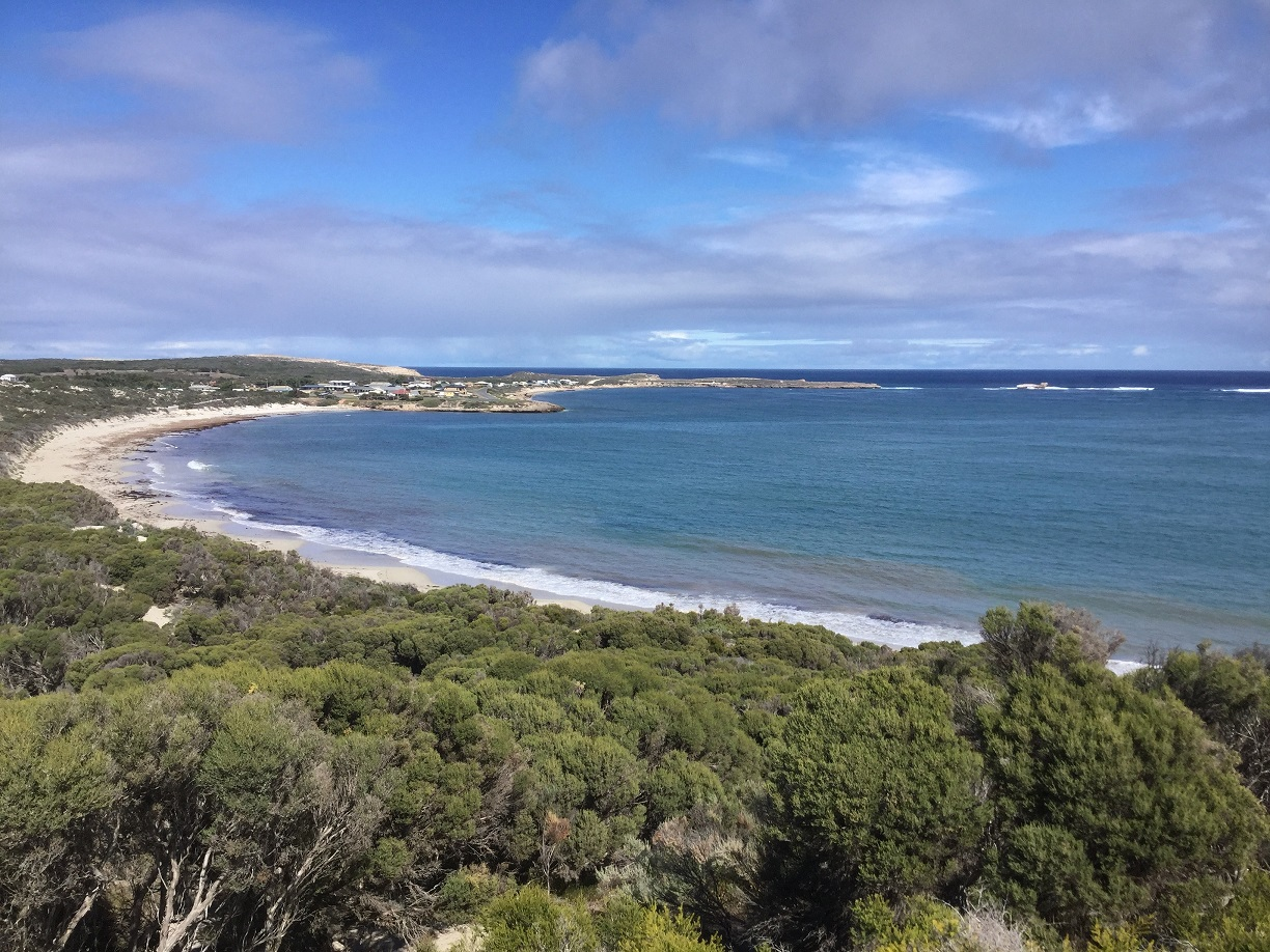 View from Elliston Lookout